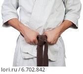 Руки завязывают коричневый пояс на белом кимоно. Стоковое фото, фотограф Александр Гречин / Фотобанк Лори
