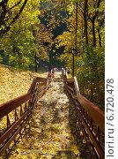 Купить «Москва. Лестница, усыпанная опавшими листьями», эксклюзивное фото № 6720478, снято 8 октября 2014 г. (c) Елена Коромыслова / Фотобанк Лори