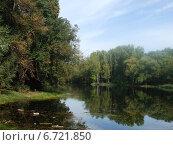 Лесное озеро осенью. Стоковое фото, фотограф Irina / Фотобанк Лори