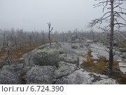 На вершине горы Воттоваара. Стоковое фото, фотограф Владимир Семенов / Фотобанк Лори