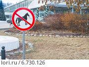 Купить «Знак, запрещающий передвижение на лошади», фото № 6730126, снято 29 ноября 2014 г. (c) Зобков Георгий / Фотобанк Лори