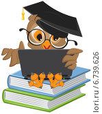 Купить «Сова в академической шапочке сидит на книгах и смотрит в ноутбук», иллюстрация № 6739626 (c) Алексей Григорьев / Фотобанк Лори