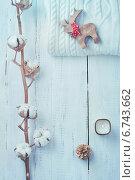 Белая коллекция зимних или рождественских украшений. Стоковое фото, фотограф Светлана Витковская / Фотобанк Лори