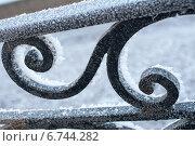 Фрагмент ограды с завитком. Стоковое фото, фотограф Инна Остановская / Фотобанк Лори