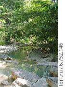 Купить «Река Куаго», фото № 6752146, снято 28 августа 2014 г. (c) Елена Александрова / Фотобанк Лори