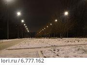 Парк «Садовники» в Москве ночью (2014 год). Редакционное фото, фотограф lana1501 / Фотобанк Лори