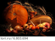 Натюрморт с тыквами. Стоковое фото, фотограф Мельникова Надежда / Фотобанк Лори