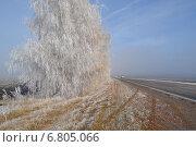 Зимняя дорога. Стоковое фото, фотограф Екатерина Бычкова / Фотобанк Лори