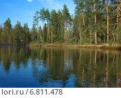 Купить «Сосновые леса на берегах реки Клязьмы», фото № 6811478, снято 10 мая 2013 г. (c) Самойлова Екатерина / Фотобанк Лори