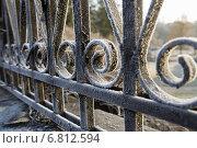Забор покрытый инеем. Стоковое фото, фотограф Екатерина Ярославовна Мостовая / Фотобанк Лори
