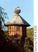 Rühstädt, Germany, an eyrie with storks on the water tower. Стоковое фото, агентство Caro Photoagency / Фотобанк Лори