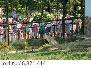 Купить «Люди у вольера со львами», эксклюзивное фото № 6821414, снято 16 августа 2013 г. (c) Щеголева Ольга / Фотобанк Лори