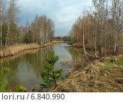 Купить «Зарастающее озеро ранней весной», фото № 6840990, снято 1 мая 2011 г. (c) Самойлова Екатерина / Фотобанк Лори
