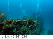 Купить «Затонувший сухогруз лежит на дне», фото № 6841634, снято 11 февраля 2013 г. (c) Сергей Дубров / Фотобанк Лори
