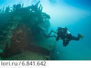 Купить «Дайверы возле затонувшего судна», фото № 6841642, снято 11 февраля 2013 г. (c) Сергей Дубров / Фотобанк Лори