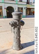 Серый пожарный гидрант на центральной улице Piotrkowska г. Лодзь, Польша (2014 год). Редакционное фото, фотограф Иван Марчук / Фотобанк Лори