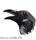 Купить «Крик ворона», иллюстрация № 6846910 (c) Веснинов Янис / Фотобанк Лори