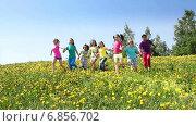 Купить «Дети сбегают по зеленому склону», видеоролик № 6856702, снято 14 декабря 2014 г. (c) Сергей Новиков / Фотобанк Лори