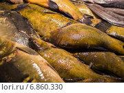 Купить «Свежая рыба на рижском рынке», эксклюзивное фото № 6860330, снято 21 августа 2014 г. (c) Gagara / Фотобанк Лори