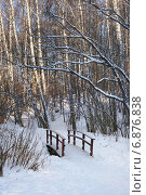 Купить «Зима. Деревянный мостик в лесу», эксклюзивное фото № 6876838, снято 6 января 2015 г. (c) Dmitry29 / Фотобанк Лори