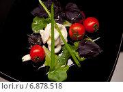 Свежий фитнес салат с мягким сыром рикотта, базиликом и помидорами черри. Стоковое фото, фотограф Mariya L / Фотобанк Лори