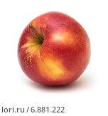 """Купить «Спелый красный плод яблока сорта """"Клубничка""""», фото № 6881222, снято 9 декабря 2014 г. (c) Родион Власов / Фотобанк Лори"""