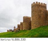Купить «Closeup of medieval town walls», фото № 6886330, снято 16 ноября 2014 г. (c) Яков Филимонов / Фотобанк Лори