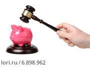 Купить «Рука с судейским молотком ударяет по копилке», фото № 6898962, снято 29 декабря 2014 г. (c) Денис Ларкин / Фотобанк Лори