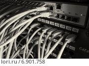 Купить «Сетевые кабели, входящие в маршрутизатор и патч-панель локальной вычислительной сети», фото № 6901758, снято 10 января 2015 г. (c) Александр Степанов / Фотобанк Лори