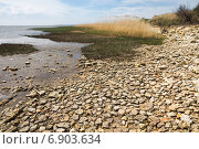 Купить «Камни на берегу Азовского моря», фото № 6903634, снято 20 апреля 2014 г. (c) Борис Панасюк / Фотобанк Лори