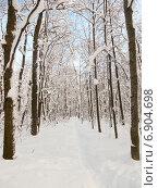 Купить «Тропинка в заснеженном лесу солнечным морозным днем», фото № 6904698, снято 26 января 2014 г. (c) Григорий Белоногов / Фотобанк Лори