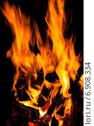 Горящие в костре дрова. Стоковое фото, фотограф Давид Арутюнов / Фотобанк Лори