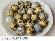 Перепелиные яйца на тарелке. Стоковое фото, фотограф Сергей Кочевых / Фотобанк Лори
