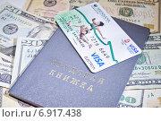Купить «Трудовая книжка и банковская карточка Visa», фото № 6917438, снято 21 января 2014 г. (c) Sashenkov89 / Фотобанк Лори