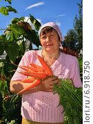 Дачница с урожаем моркови. Стоковое фото, фотограф Мельникова Надежда / Фотобанк Лори