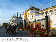 Купить «Plaza de Toros. Seville, Andalusia», фото № 6918786, снято 19 ноября 2014 г. (c) Яков Филимонов / Фотобанк Лори