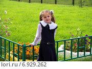 Школьница. Стоковое фото, фотограф Александр / Фотобанк Лори