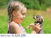 Купить «Девочка держит в руках маленького щенка», фото № 6929290, снято 9 июля 2014 г. (c) Икан Леонид / Фотобанк Лори