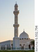 Купить «Мечеть в оазисе Лива, Абу Даби, ОАЭ», фото № 6932794, снято 23 декабря 2014 г. (c) Анастасия Золотницкая / Фотобанк Лори