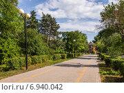 Купить «Аллея в сквере «Берёзка» в городе Азов», фото № 6940042, снято 13 июня 2014 г. (c) Борис Панасюк / Фотобанк Лори