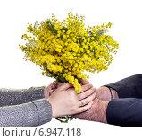 Женские и мужские руки с букетом мимозы. Стоковое фото, фотограф Татьяна Ляпи / Фотобанк Лори