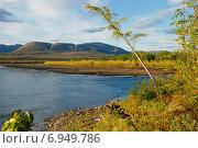 Купить «Полуостров Таймыр, плато Путорана, река Микчангда», фото № 6949786, снято 17 августа 2011 г. (c) Сергей Дрозд / Фотобанк Лори