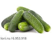 Купить «Cucumber vegetable isolated on white background cutout», фото № 6953918, снято 14 мая 2014 г. (c) Natalja Stotika / Фотобанк Лори