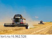 Комбайны в поле на фоне голубого неба убирают урожай. Стоковое фото, фотограф Альховик Людмила / Фотобанк Лори