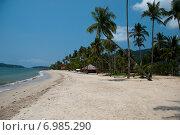 Пляж с пальмами. Стоковое фото, фотограф Сергей Киселев / Фотобанк Лори