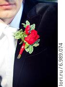 Купить «Красная бутоньерка на костюме жениха», фото № 6989074, снято 7 сентября 2013 г. (c) Михаил Смиров / Фотобанк Лори
