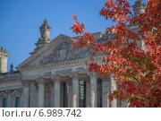 Купить «Дерево на фоне Рейхстага в Берлине, Германия», фото № 6989742, снято 5 октября 2014 г. (c) Анастасия Улитко / Фотобанк Лори
