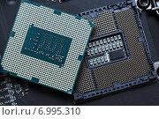 Купить «Центральный процессор на материнской плате», фото № 6995310, снято 17 декабря 2014 г. (c) Михаил Коханчиков / Фотобанк Лори