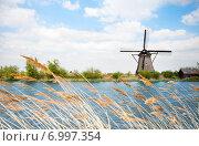 Купить «Ветряная мельница в Голландии», фото № 6997354, снято 20 апреля 2014 г. (c) Сергей Новиков / Фотобанк Лори