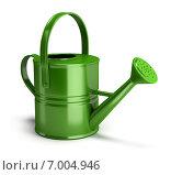 Купить «Зеленая садовая лейка», иллюстрация № 7004946 (c) Anatoly Maslennikov / Фотобанк Лори
